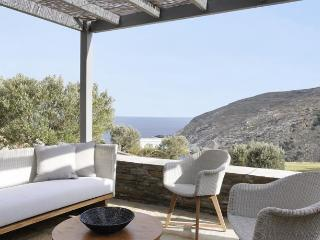 Luxury Villa with Sea View in Andros