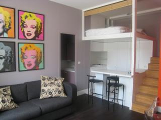 Newly renovated modern  studio apartment  Bastille, Paris