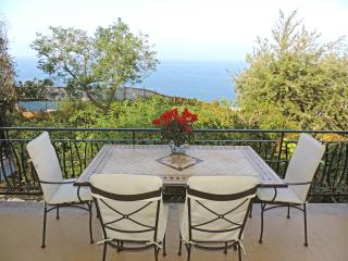 Villa Donna Elisa,seafront Sorrento center, perfect family accomodation