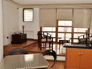 Modern loft style apartment in Laureles, Medellin