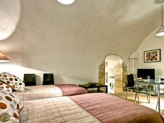 Renovated 18th century wine cellar - Saint Germain