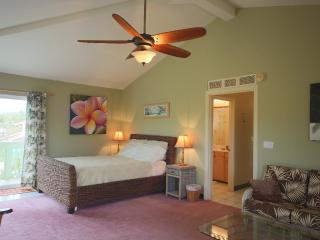Sleeps 2-5, Spacious, Central AC, WiFi, Kailua