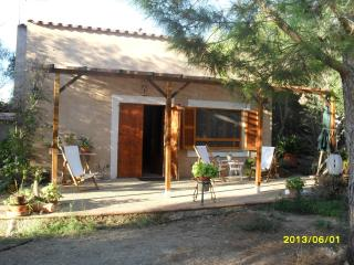 Wonderful Rural House