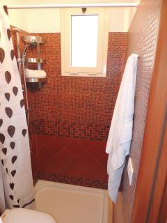 bathroom with shower - pool level