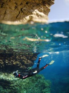 Diving classes. Book with us!