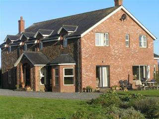 Ash House B & B and 2 bed apartment, Calverstown