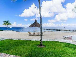 Beachfront Villa Magnificent Views, Pool, Fast Internet, Dive Boat Pickup, Cozumel