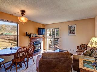 Mountainside 173B Condo Frisco Colorado Vacation Rental