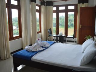 river & mount view room