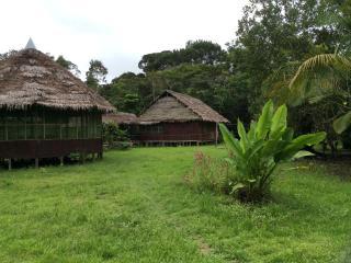 EL ESPIRITU DE AMOR ..jungles tours medicine lodge