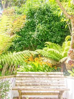 The tropical garden area perfect for relaxing