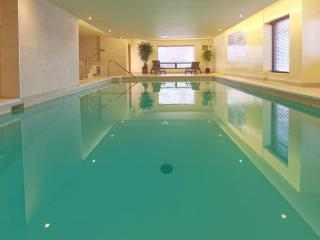 Beautiful 1 bedroom apartment | Pool | Gym | View, Montreal