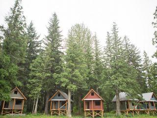 Cabin #1, Terrace