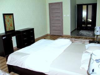 1 Bedroom aparmtent at AFD Plaza