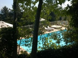 2 bedroom Apartment in Sassetta, Tuscany, Italy : ref 5474727