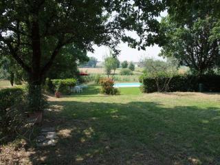Cipressi, Larciano
