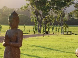 The main driveway where our friendly Buddha is ready to greet every guest.