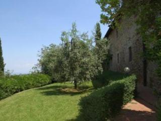 Corelli, Montaione