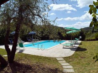 Pergola, Montaione