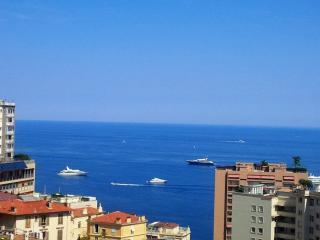 Vue Méditerranéen - Monaco - Cote d'azur, Beausoleil