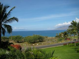Fabulous Ocean View - Luxury Condo, Kihei