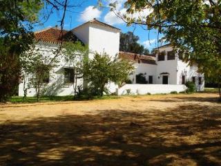 Magnífica casa en el entorno de Doñana, La Puebla del Río
