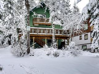 Cozy, dog-friendly mountain chalet w/ private hot tub & deck - walk to slopes!