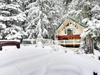 Pet-friendly cabin near Timberline with hot tub, sleeps 12!, Government Camp