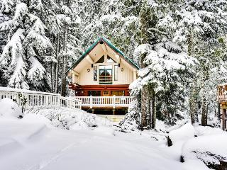 Dog-friendly hideaway near Timberline with soothing hot tub, Government Camp