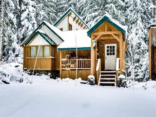 Cozy, riverfront cabin w/ private hot tub, close to ski access!