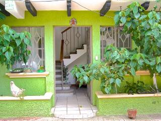 Big Cozy 5 Bedroom House Terraces in Downtown, San Cristobal de las Casas