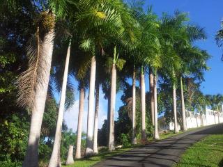 El Yunque Private with Pool - Hacienda las Palmas, Río Grande