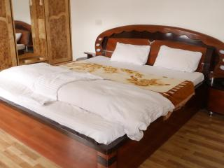 Deluxe Room Hotel PC Palace Kargil