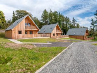 Four Bedroom hot tub lodge in Dumfries 102785, Newton Stewart