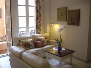 Apartamento Lujo junto al Museo Picasso de Málaga