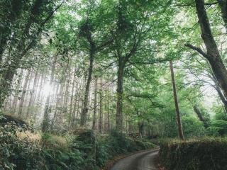 Higher Westcott Farm, Dartmoor National Park