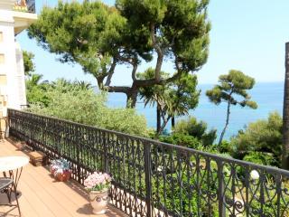 LOVELY APARTMENT PALAIS MIRE JUAN, Cannes