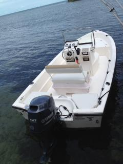 17 foot boat included in this rental. Rated for 850 lbs or about 5 people.