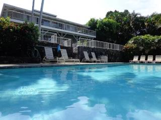Hibiscus Hale - Big Lanai, Pool, Amazing Price, Best Views! good for 10 guests!