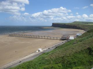 The Ruby- Saltburn-by-the-Sea