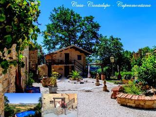 Casa-Cantalupo/Casa Lungo 4 Personen/ Cupramontana