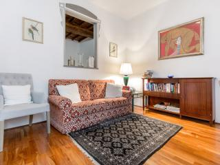 Charming Central Apartment,Terrace, A/C, WiFi, Historic Center of Florence
