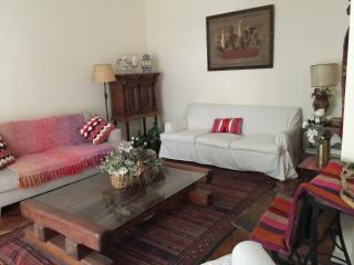 Apartment with Argentine style furnishing in Las Cañitas - Migueletes and S. B. de Palermo (285CA), Buenos Aires