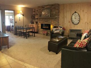 Updated unit: Across from Ski Lifts