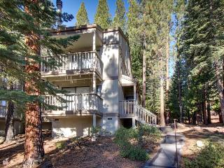 Mountain condo with forest views, shared pool, & room for 4
