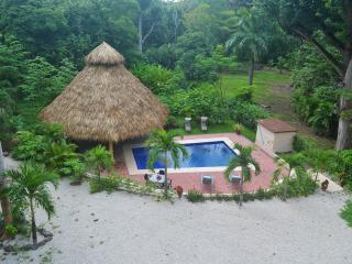 A tiki hut and a pool, what else does one require for a holiday in the tropics.