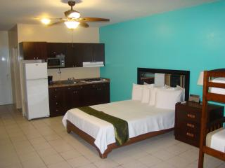 Near the Beach, Executive Studio/Apartment, Cabo Rojo