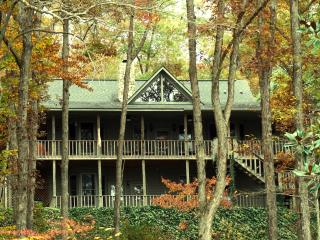 Paradise Hills Resort & Spa ~ Cat's Meow Cabin