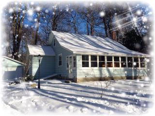 COZY COTTAGE NEAR SAUGATUCK!, Fennville