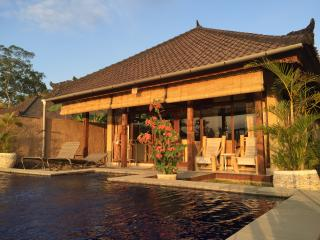 Hibiscus Bungalow pool, peace, views in Penestanan, Ubud